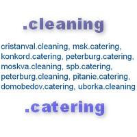 Клининг и кейтеринг получат собственные доменные зоны: .CLEANING и .CATERING